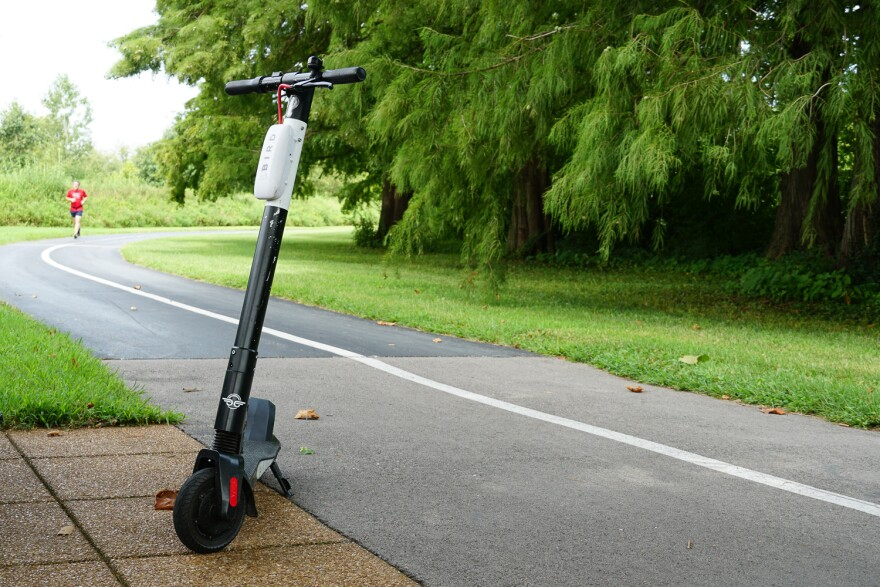 A Bird scooter in Forest Park. August 23, 2019.