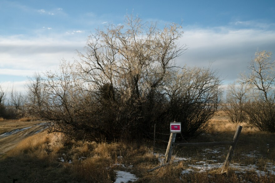 A bear warning sign on the banks of Lake Frances in Valier, Mont. Sarmento captured and tagged and released a female grizzly on Lake Frances last year, after residents voiced concerns. The grizzly did not cause any conflicts.