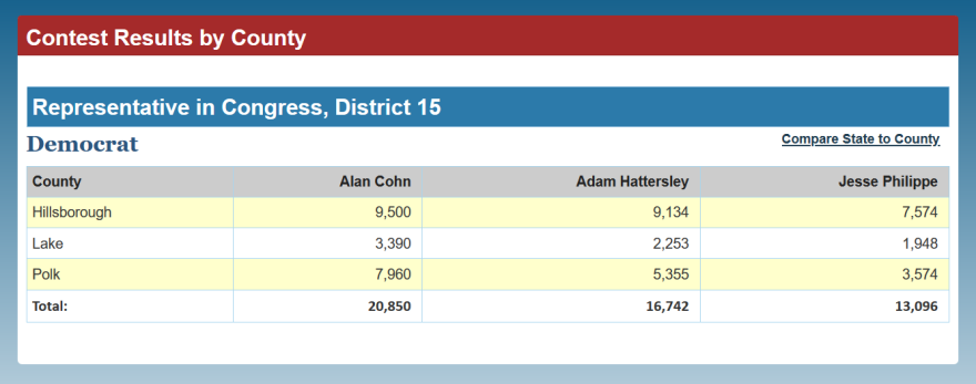 County-by-county breakdown for the Democratic District 15 primary