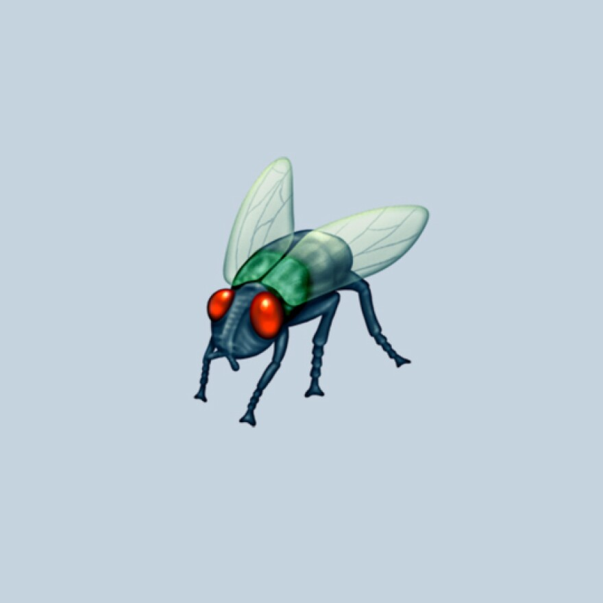 """Scientists on Twitter commented that this emoji looked too much like the much-hated house fly rather than the numerous other """"lovely"""" flies they study."""