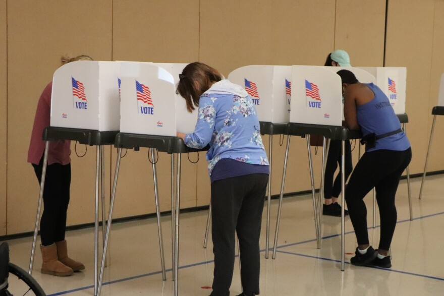 Voters cast ballots at Belmont Elementary School on Nov. 3, 2020. Erin Keever/WFAE
