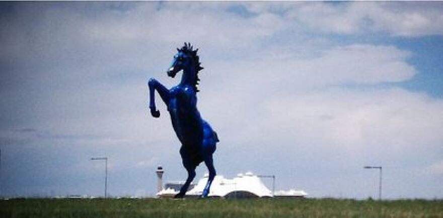 blue horse wider_0.JPG