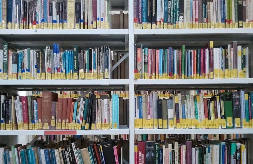 library_book_shelves_twechy_cc-by.jpg