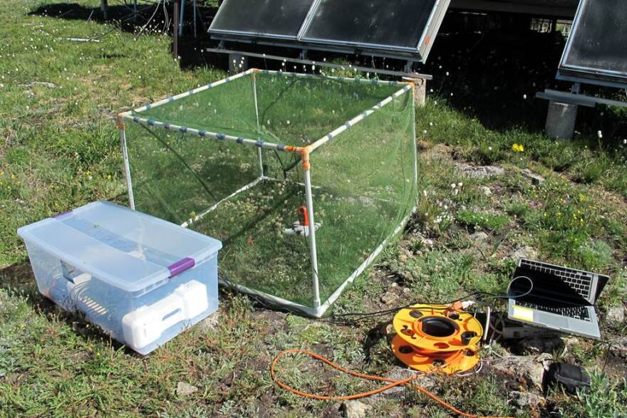 The recording equipment used to tape the buzzing sound of bees at a research site in Colorado.