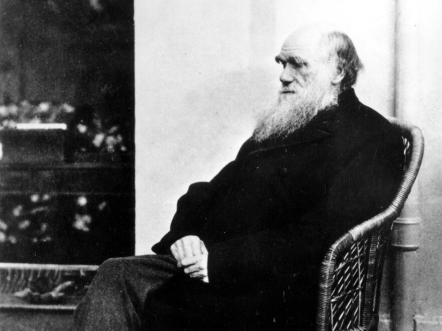 Have you seen this man's missing notebooks? Cambridge University Library appealed for public help Tuesday, saying that a pair of notebooks by Charles Darwin — seen here in 1875 — have been missing for nearly two decades.