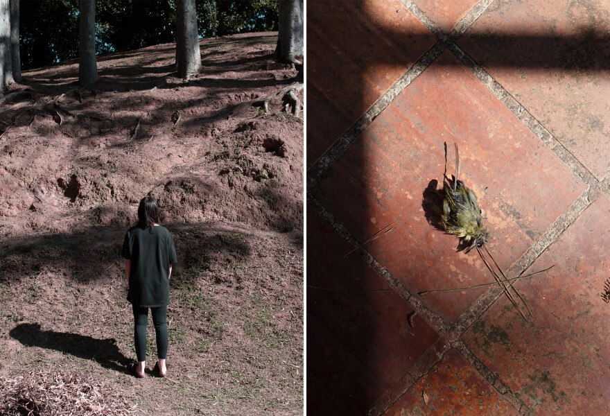 Left: Sofia at a small square near home, during the third week of quarantine. Right: A detail of a dead bird at Rachel's backyard on the first week of quarantine.