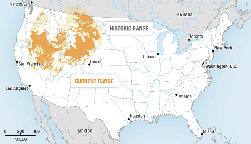 The current range of the sage grouse (as of the late 1990s) and its maximum range since the early 1880s.