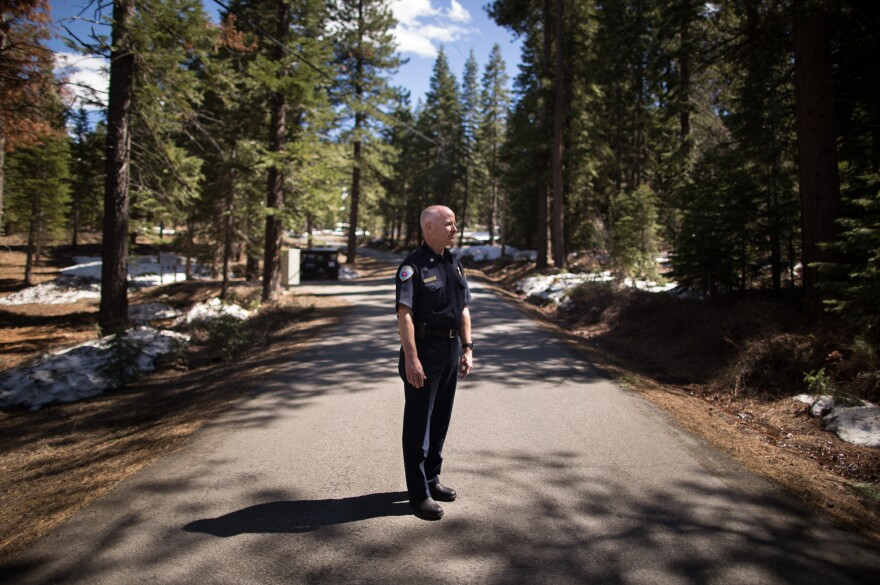 Bill Seline, the fire chief in Truckee, stands on a road between land that has been cleared of overgrown vegetation (left) and land that hasn't (right). The Truckee Fire Department is involved in an effort to reduce fuel risk on 9.6 acres of land in this area.