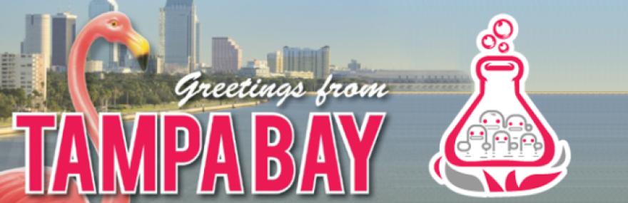 6-6-13_Startup-Weekend-Tampa-Bay_0.png