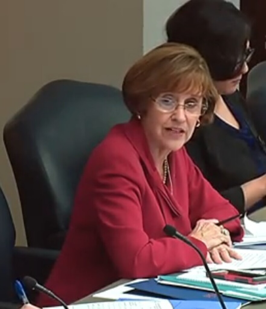 Rep. Gayle Harrell (R-Stuart) leading a hearing Wednesday on mental health and substance abuse issues.