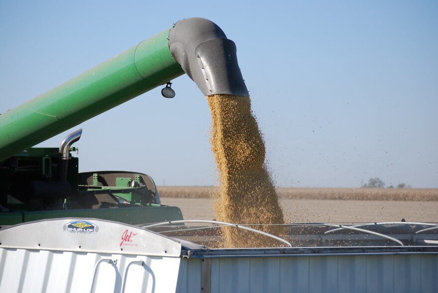 a photo of a soybean harvester