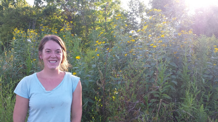 Laura Krugh uses native plants for her wool dye