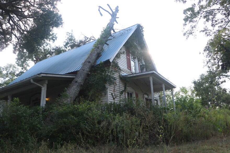Tree fallen on home with blue roof.