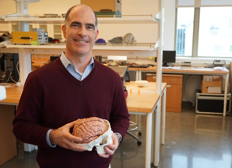 Philip Bayly, professor of mechanical engineering at WashU, helped design a special device to study the movement of the human brain.