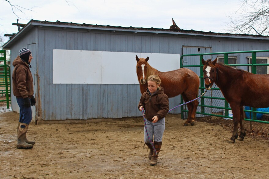 121418_ML_horsesanctuary_02_0.JPG