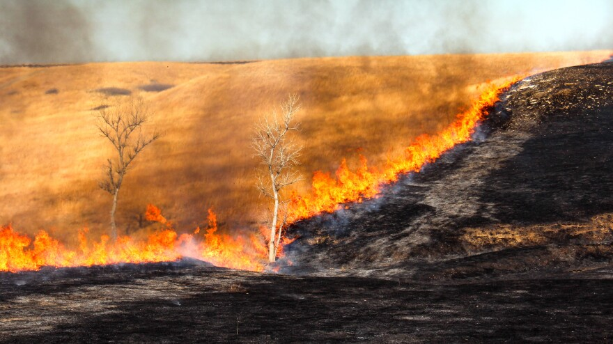 A line of fire turns brown grass into black earth.