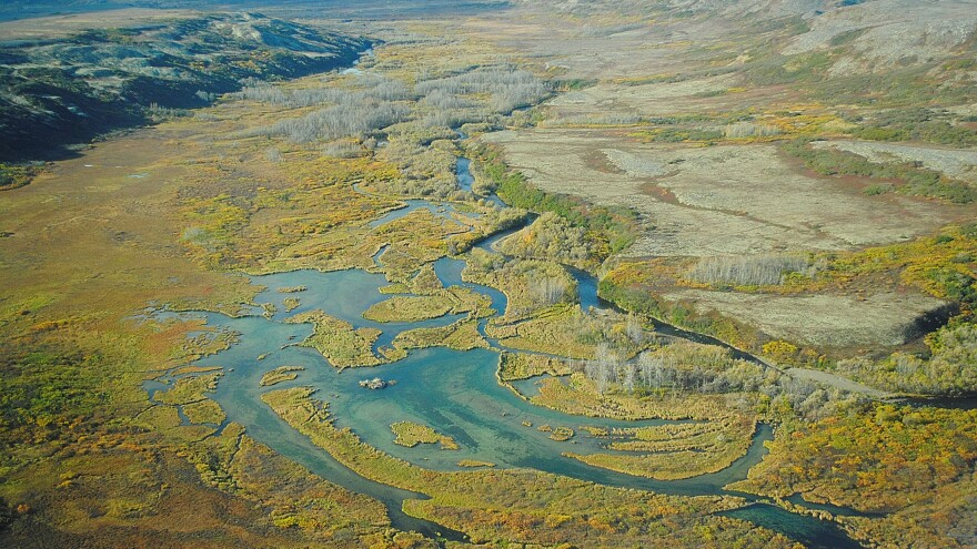The Upper Tularik Floodplain in the Bristol Bay watershed in Alaska is the site of a fight over a proposed mining project has dragged on for years.