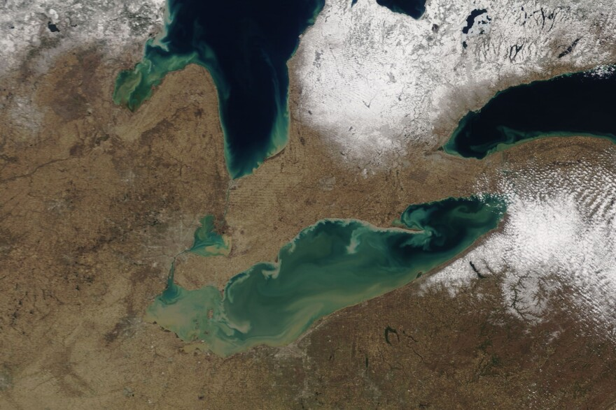 photo of Lake Erie algae