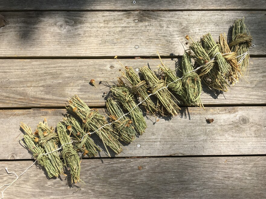 A garland of greenthread. The dried bundles are brewed with sugar or honey.