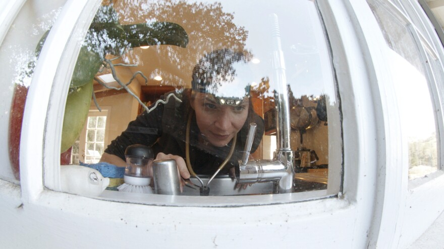 Entomologist Michelle Trautwein searches a kitchen windowsill, a common place to find arthropods that wandered in from the surrounding environment.