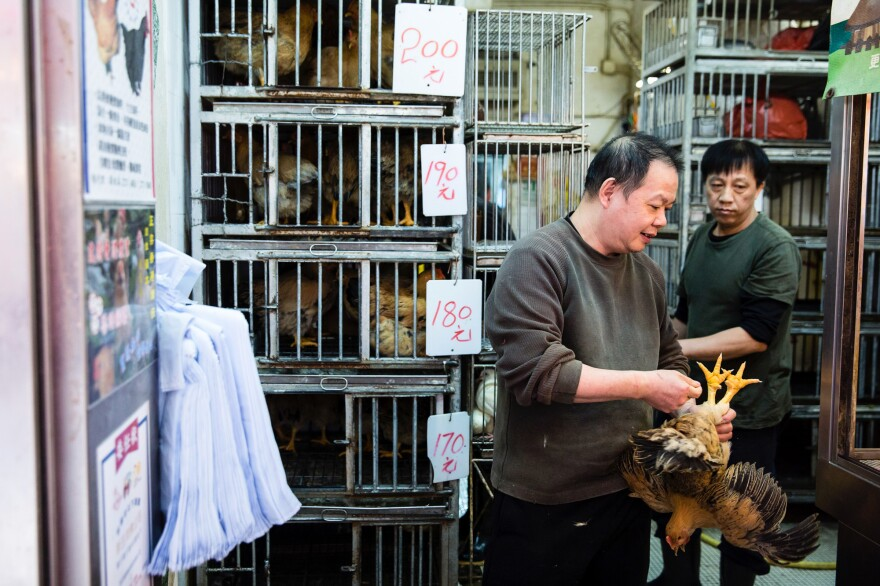 A shop owner holds a live chicken for sale in a Hong Kong market.
