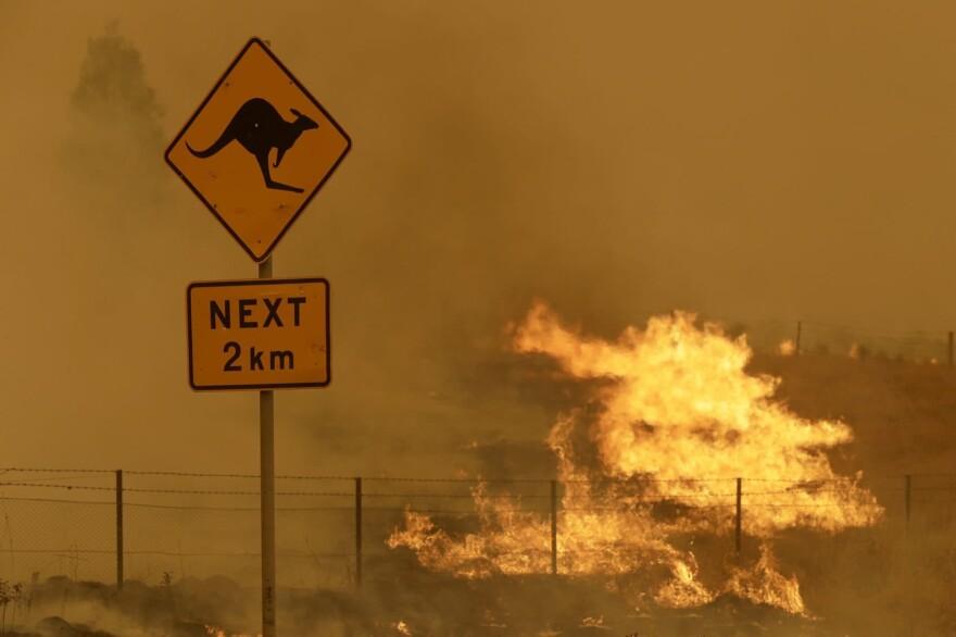 Fire burns in the grass near Bumbalong, south of the Australian capital, Canberra, Saturday, Feb. 1, 2020. (Rick Rycroft/AP)