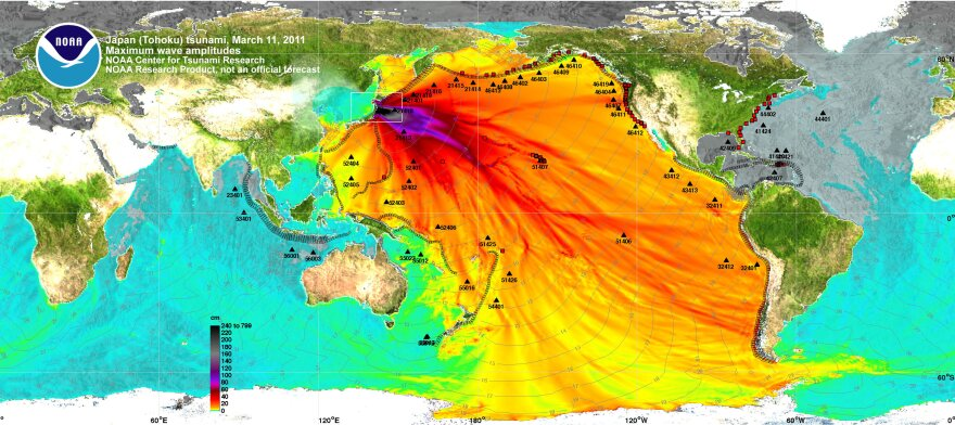 Data from NOAA showing the 2011 tsunami in Japan helped inspire artist Janet Echelman's work.