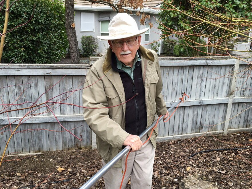 Jim Shute is 95 and still wielding a mean pole saw.