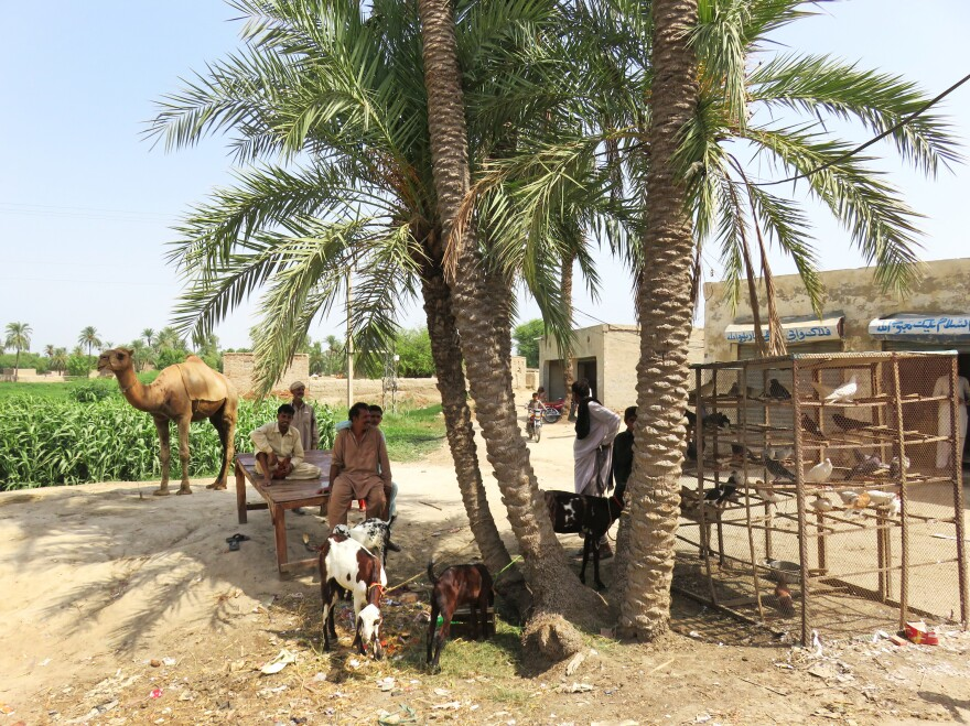 Men shelter from the heat in a village in south Punjab, Pakistan's most populous province.