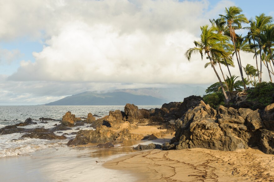 Maui,_Hawaii_beach.jpg