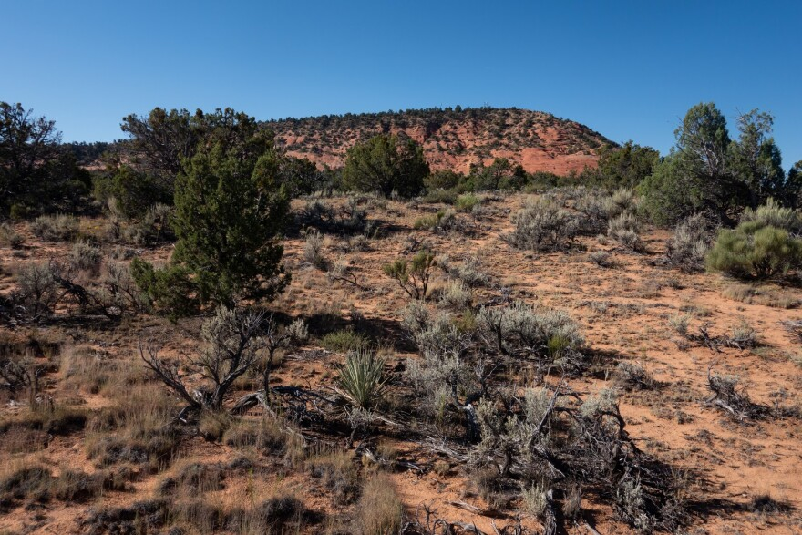Photo of red rock bluff.