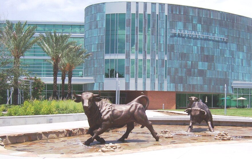 Statues of bulls outside the USF Marshall Student Center.