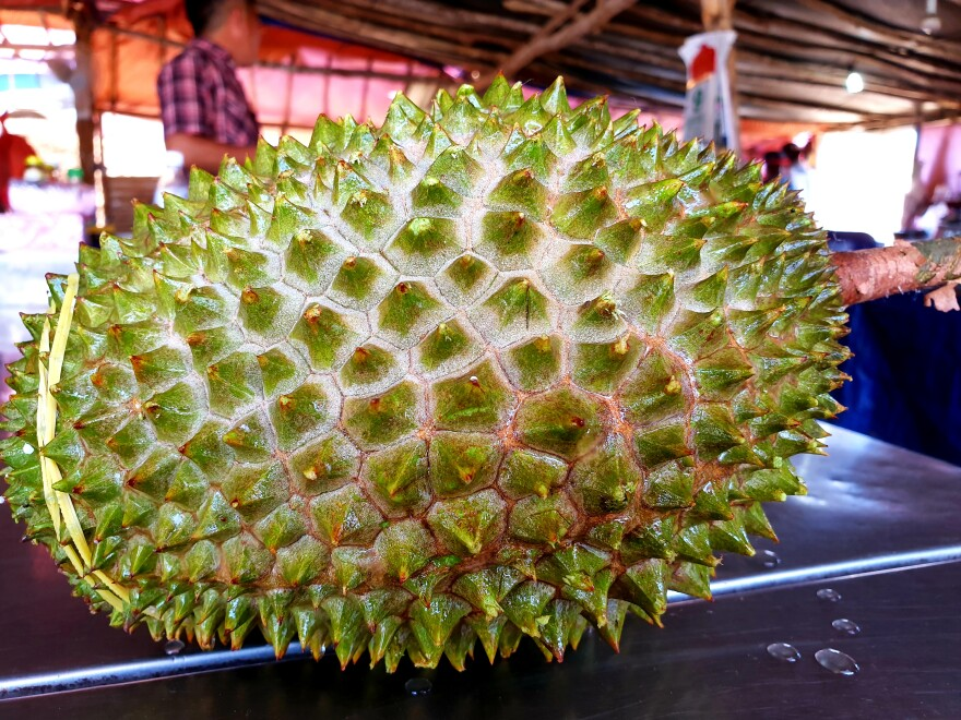 A Malaysian Musang King durian, much sought after by consumers in China.