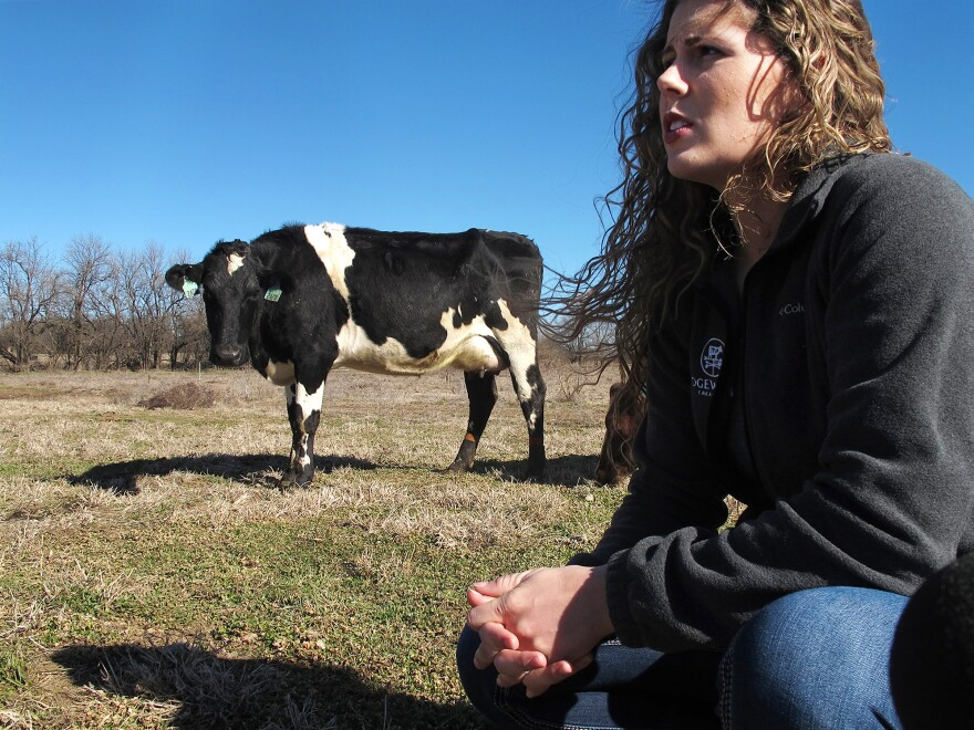 Farmer Aubrey Fletcher of Purdy, Mo., is one of thousands of women who have taken on leadership roles in the traditionally male-dominated agriculture industry. Despite her busy workload, Fletcher has been making the time to meet regularly with a new group of women dairy farmers in her area.