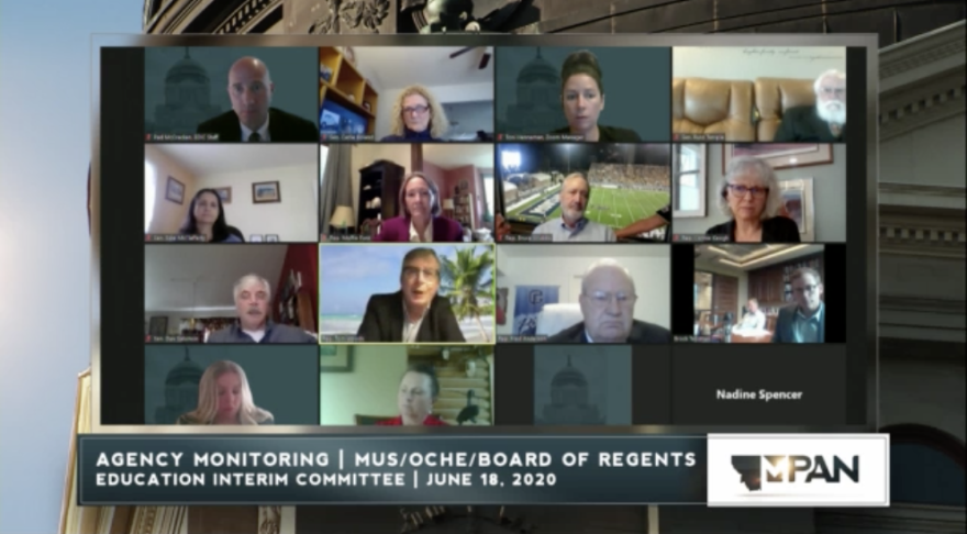 A block grid of legistors' faces in a screen grab from a Zoom meeting.