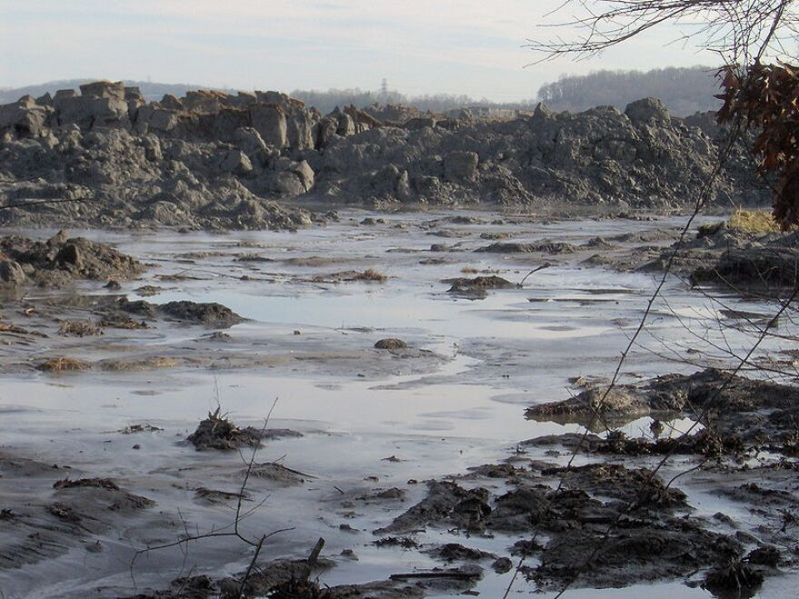 View of the TVA Kingston Fossil Plant fly ash spill, appx. 1 mile from the retention pond. This view is from just off Swan Pond Road. The pile of ash in the photo is 20-25 feet high, and stretches for two miles or so along this inlet (the inlet empties i