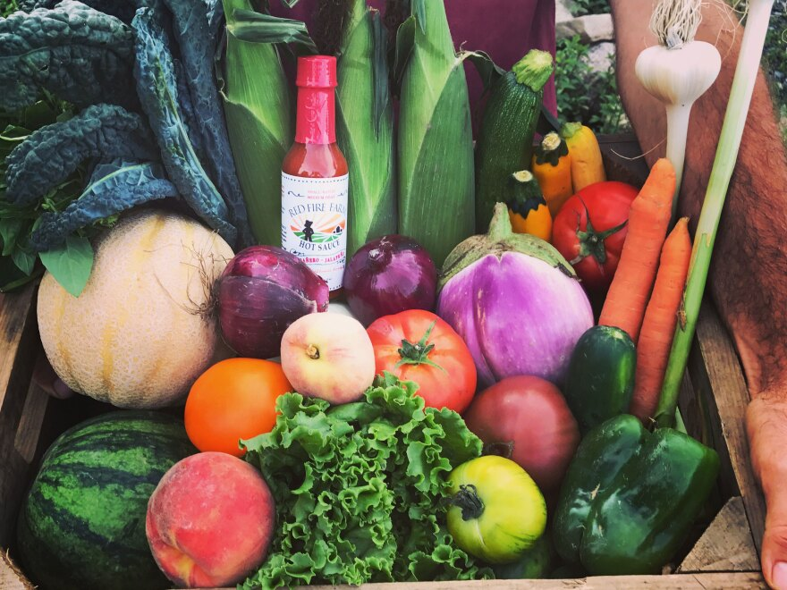 An example of summer produce from the organic CSA Red Fire Farm in the Connecticut River Valley outside of Amherst, Mass.