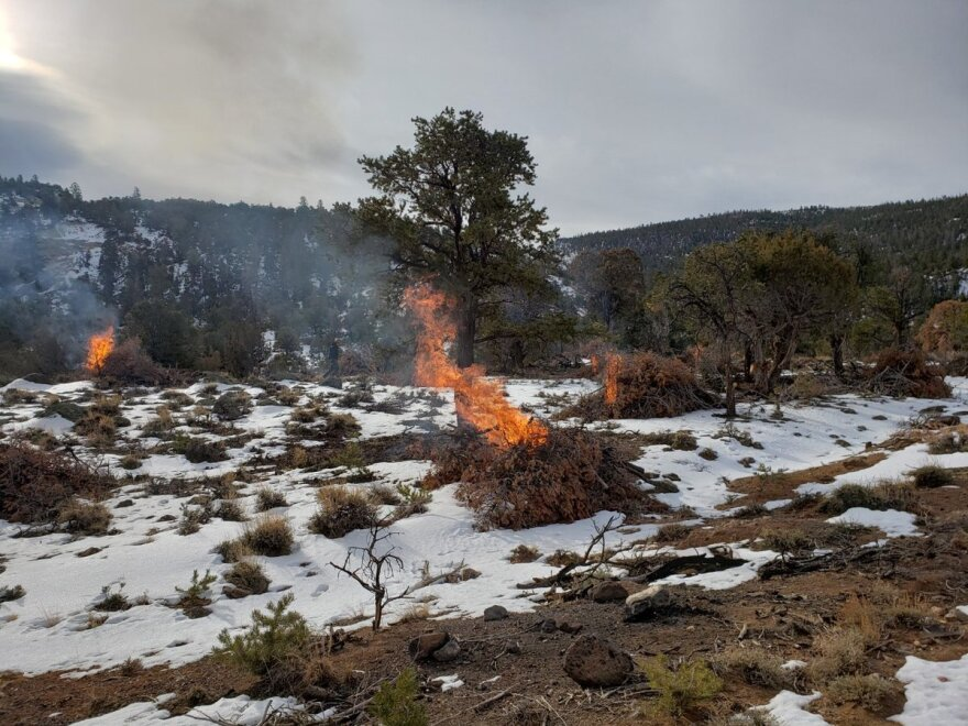 A photo of small prescribed burn fires in snowy conditions.