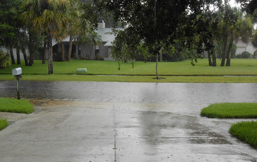 Flooding on Kingston Drive in Sarasota on August 8, 2013.