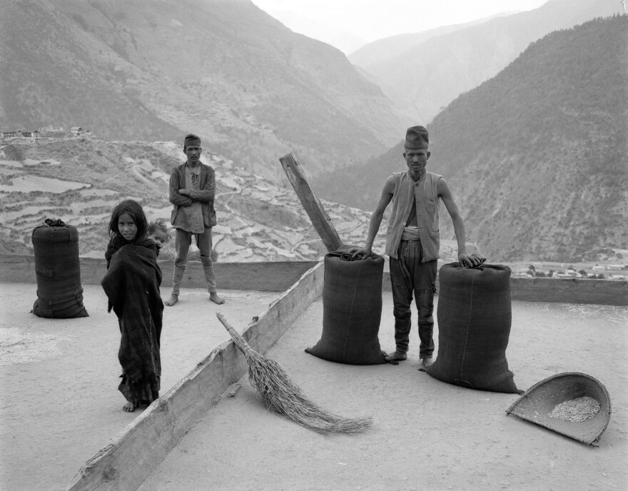 The villagers of Karkibada take to the rooftops to thresh and bag their harvest of winter barley and wheat. 1985.