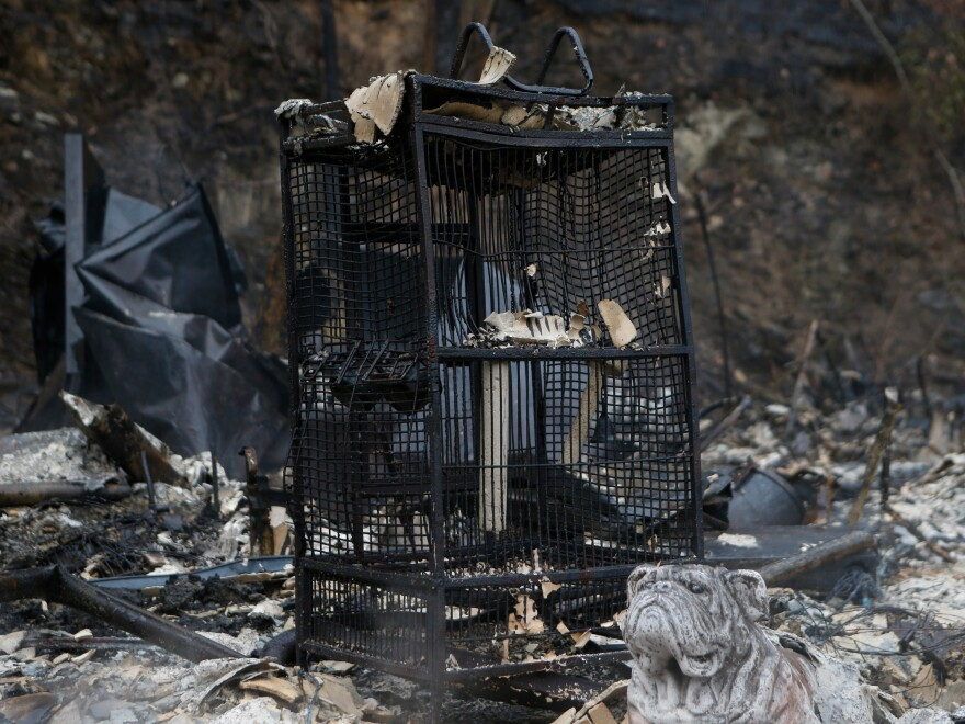 A charred birdcage sits in the smoldering remains of a home in Gatlinburg, Tenn.