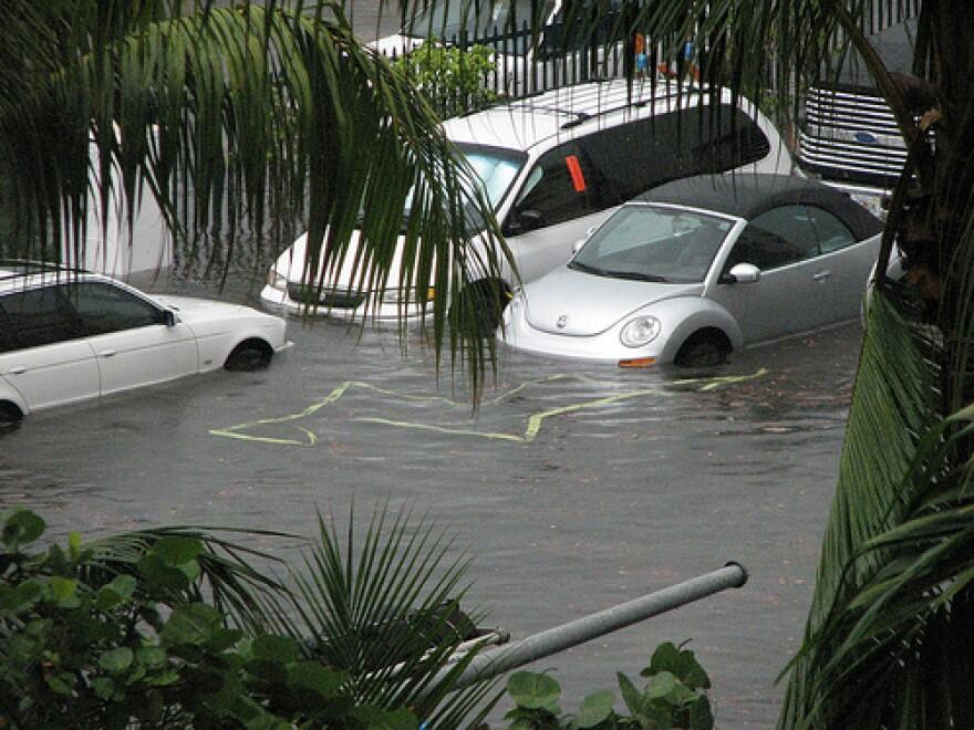 miami_flooding_maxstrz.jpg