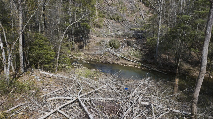 In this Thursday, May 3, 2018 photo, downed trees mark the route of the proposed Mountain Valley pipeline in Lindside, W.Va.