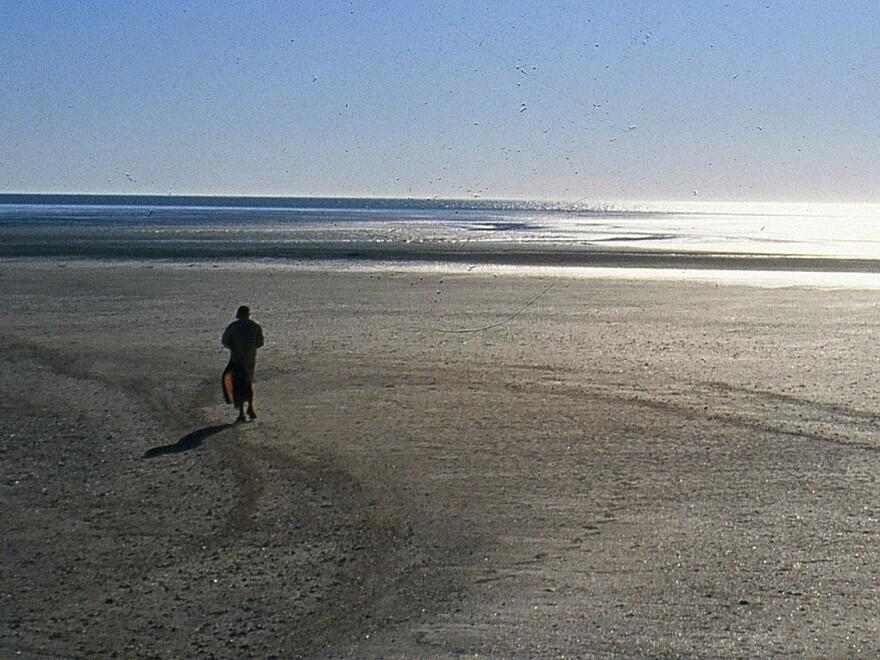 Craig Childs walks in the desert surrounding the Colorado River delta.