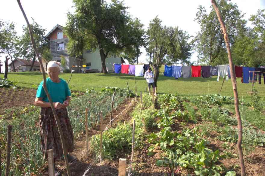 A small organic farm in Bosnia.