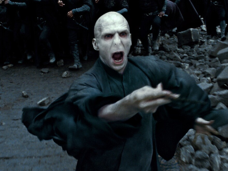 <strong>Bad To The Bone?</strong> No stranger to characters with autocratic tendencies, Fiennes played the evil wizard Voldemort in the Harry Potter films.