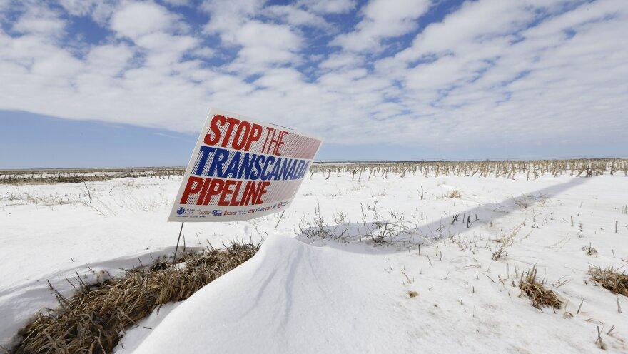 The proposed Keystone XL pipeline will run through this field near Bradshaw, Neb.