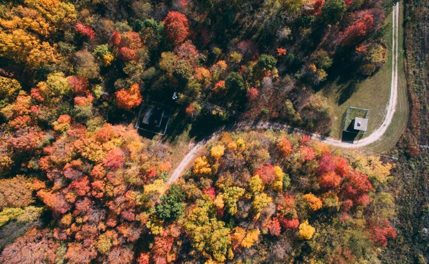 Fall scenic drives