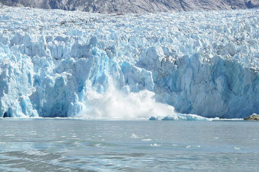 """Ice spills off the Dawes Glacier in southeast Alaska -- an event known as """"calving"""" that's becoming more common and contributes to sea-level rise."""