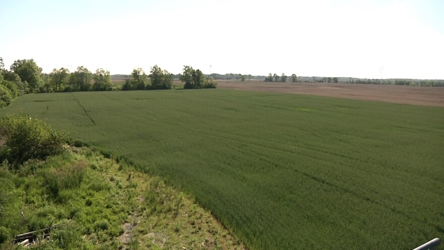 farm_ron_grayson_burns_union_county_-_konik_0.jpg